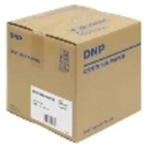 DNPセンチュリア タイプP CPP-G16.5×172 2入り