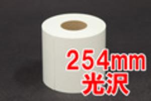MAXIMドライミニラボ用紙25.4×100 2R 光沢